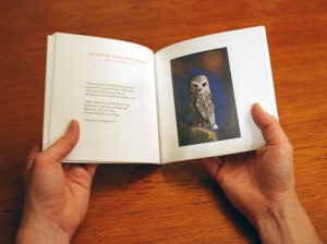 book-photo